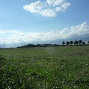 Baugrundstücke in Weilerswist