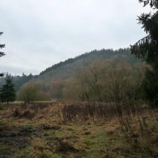 Waldgrundstück in Schleiden
